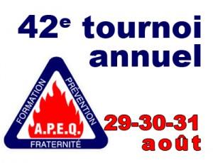 APEQ-article-2